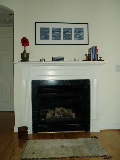 Our mantel at The Kennedy-Warren in DC. Evening Ice in Antarctica by Maria Coryell-Martin, October 2006.